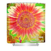 Ecclesiastes 11 7 Shower Curtain