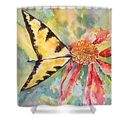 Echinacea Butterfly Shower Curtain