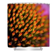 Echinacea Coneflower Abstract Shower Curtain