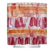 Coneflowers Particles Shower Curtain