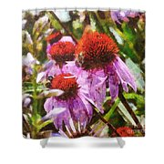 Echinacea Watercolor 2015 Shower Curtain