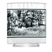Edge Of Spring Shower Curtain