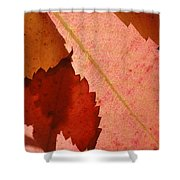 Edgy Leaves Shower Curtain