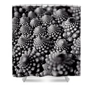 Edible Pearls Black And White Shower Curtain