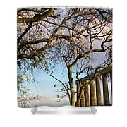 Edinburgh - Caption Hill Trees Shower Curtain