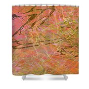 Edition 1 Double Wow Shower Curtain