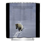 ee Cummings Be Yourself Quote Poster Shower Curtain