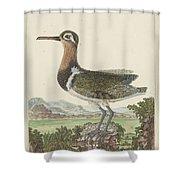 Een Gedetailleerd Landschap Shower Curtain