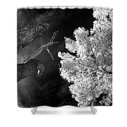 Eerie Skies In Cornville Shower Curtain