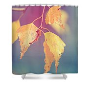 Effeuillantine - 17a Shower Curtain