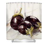 Eggplants. ,charles Demuth Shower Curtain