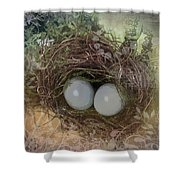 Eggs In A Nest Shower Curtain