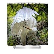 Egret - 2975 Shower Curtain