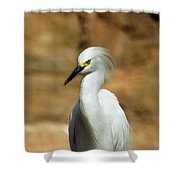 Egret 3 Shower Curtain