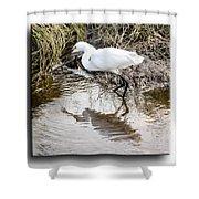 Egret 3 Shower Curtain