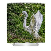 Egret - 3419 Shower Curtain