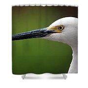 Egret Bird Shower Curtain