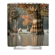 Egret Enjoying Foggy Morning In Atchafalaya Shower Curtain