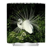 Egret Fan Dancer Shower Curtain
