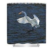 Egret Fishing Shower Curtain