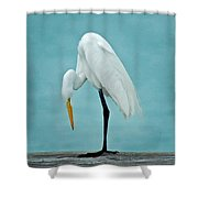Egret Foot Inspection Shower Curtain