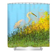 Egret In The Lake Shallows Shower Curtain