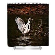 Egret Ix Shower Curtain by Gary Adkins