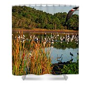 Egret Lake Shower Curtain