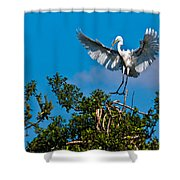 Egret Landing Shower Curtain