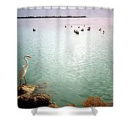 Egret On Marathon Key Shower Curtain