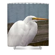 Egret On The Dock Shower Curtain
