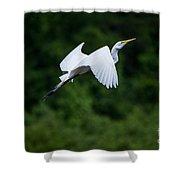 Egret Rising II Shower Curtain
