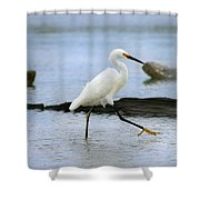 Egret Step Shower Curtain
