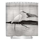 Egret Step In Black And White Shower Curtain