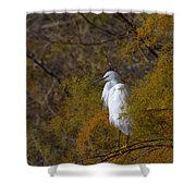 Egret Surrounded By Golden Leaves Shower Curtain