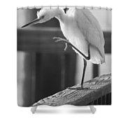 Egret Tai Chi Shower Curtain