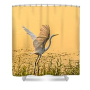 Egret Take Off 1 Shower Curtain