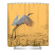 Egret Take Off 3 Shower Curtain