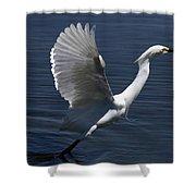 Egret Taking Off Shower Curtain