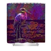 Egret White Bird Beach Wildlife  Shower Curtain