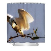 Egrets Landing Shower Curtain