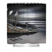 Egrets Watching Shower Curtain