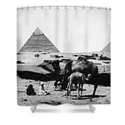Egypt: Camel & Baby, C1899 Shower Curtain