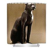Egyptian Bronze Statuette Shower Curtain