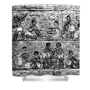 Egyptian Writing Shower Curtain