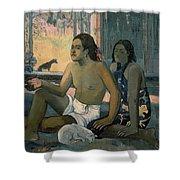 Eiaha Ohipa Or Tahitians In A Room Shower Curtain