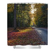 Eighth Lake Beckons Shower Curtain