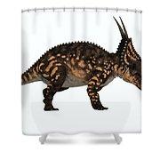 Einiosaurus Side Profile Shower Curtain