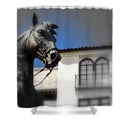 El Caballo Del Calle Olvera Shower Curtain