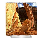 El Malpais La Ventana Arch Shower Curtain